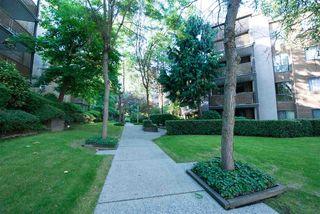 Photo 19: 104 10626 151A STREET in Surrey: Guildford Condo for sale (North Surrey)  : MLS®# R2286642