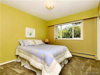Photo 12: 4051 Ebony Pl in VICTORIA: SE Arbutus Single Family Detached for sale (Saanich East)  : MLS®# 649424