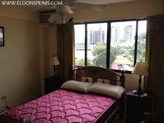 Photo 18:  in Panama City: Residential Condo for sale (El Cangrejo)  : MLS®# Charming El Cangrejo
