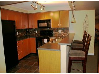 """Photo 10: 220 20750 DUNCAN Way in Langley: Langley City Condo for sale in """"Fairfield Lane"""" : MLS®# F1417131"""