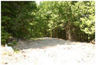 Photo 29: 3496 Eagle Bay Road: Eagle Bay Vacant Land for sale (Shuswap Lake)  : MLS®# 10101761
