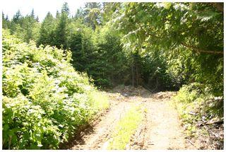 Photo 28: 3496 Eagle Bay Road: Eagle Bay Vacant Land for sale (Shuswap Lake)  : MLS®# 10101761