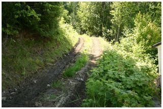Photo 25: 3496 Eagle Bay Road: Eagle Bay Vacant Land for sale (Shuswap Lake)  : MLS®# 10101761