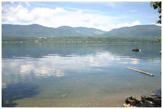 Photo 11: 3496 Eagle Bay Road: Eagle Bay Vacant Land for sale (Shuswap Lake)  : MLS®# 10101761
