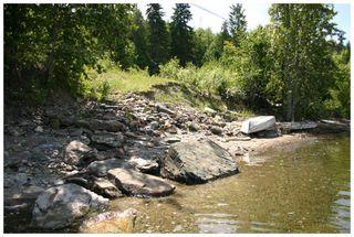 Photo 13: 3496 Eagle Bay Road: Eagle Bay Vacant Land for sale (Shuswap Lake)  : MLS®# 10101761