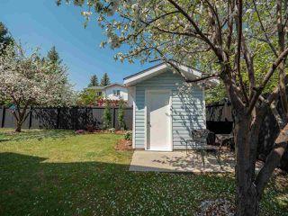 Photo 29: 224 RHATIGAN Road E in Edmonton: Zone 14 House for sale : MLS®# E4175557
