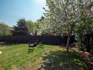Photo 30: 224 RHATIGAN Road E in Edmonton: Zone 14 House for sale : MLS®# E4175557