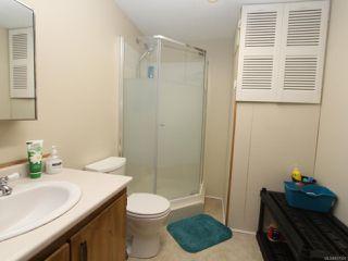 Photo 76: 5584 Prendergast Rd in COURTENAY: CV Courtenay West House for sale (Comox Valley)  : MLS®# 837501