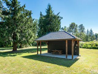 Photo 21: 5584 Prendergast Rd in COURTENAY: CV Courtenay West House for sale (Comox Valley)  : MLS®# 837501