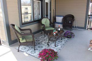 Photo 26: 303 9908 84 Avenue in Edmonton: Zone 15 Condo for sale : MLS®# E4195036
