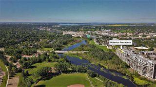 Photo 4: 917 200 BELLEROSE Drive: St. Albert Condo for sale : MLS®# E4208064