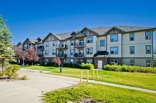 Photo 4: 203 37 Prestwick Drive SE in Calgary: McKenzie Towne Apartment for sale : MLS®# A1033040