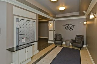 Photo 8: 203 37 Prestwick Drive SE in Calgary: McKenzie Towne Apartment for sale : MLS®# A1033040