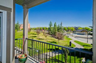 Photo 30: 203 37 Prestwick Drive SE in Calgary: McKenzie Towne Apartment for sale : MLS®# A1033040