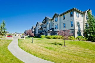 Photo 5: 203 37 Prestwick Drive SE in Calgary: McKenzie Towne Apartment for sale : MLS®# A1033040