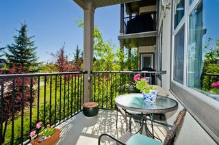Photo 29: 203 37 Prestwick Drive SE in Calgary: McKenzie Towne Apartment for sale : MLS®# A1033040