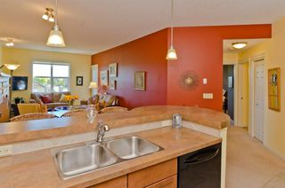 Photo 15: 203 37 Prestwick Drive SE in Calgary: McKenzie Towne Apartment for sale : MLS®# A1033040