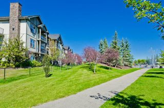 Photo 6: 203 37 Prestwick Drive SE in Calgary: McKenzie Towne Apartment for sale : MLS®# A1033040