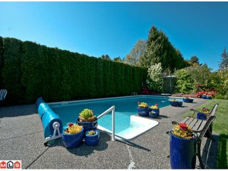 Photo 1: 14123 31A Avenue in Surrey: Elgin Chantrell House for sale (South Surrey White Rock)  : MLS®# F1212897