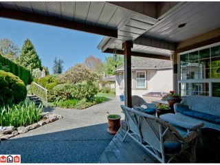 Photo 9: 14123 31A Avenue in Surrey: Elgin Chantrell House for sale (South Surrey White Rock)  : MLS®# F1212897