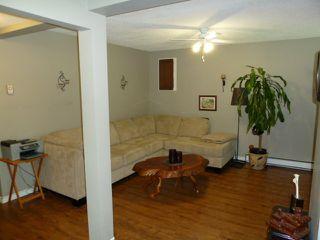 Photo 20: 206 Davis Crescent in Springfield: Home for sale : MLS®# F1222227