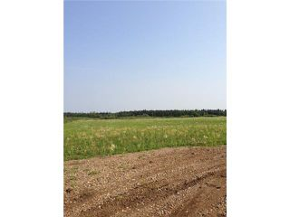 Photo 1: #114 63221 HWY 897: Rural Bonnyville M.D. Land (Commercial) for sale : MLS®# E1021749