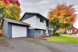 Photo 2: 12224 MCTAVISH PLACE in Maple Ridge: Northwest Maple Ridge House for sale : MLS®# R2319402