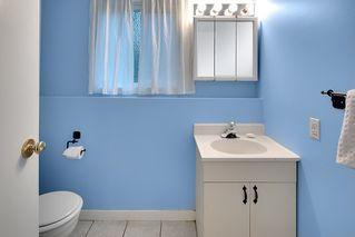 Photo 19: 12224 MCTAVISH PLACE in Maple Ridge: Northwest Maple Ridge House for sale : MLS®# R2319402