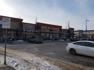 Photo 3: 0 N/A in Edmonton: Zone 41 Business for sale : MLS®# E4185680