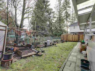 """Photo 19: 8016 159 Street in Surrey: Fleetwood Tynehead House for sale in """"FLEETWOOD TYNEHEAD"""" : MLS®# R2527005"""