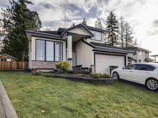 "Main Photo: 8016 159 Street in Surrey: Fleetwood Tynehead House for sale in ""FLEETWOOD TYNEHEAD"" : MLS®# R2527005"