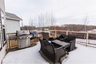 Photo 26: 22 AMEENA Drive: Leduc House for sale : MLS®# E4225006