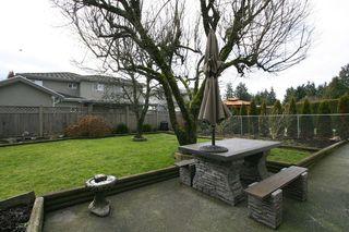 Photo 7: 11082 84A AV in Delta: Nordel House for sale (N. Delta)  : MLS®# F1202372