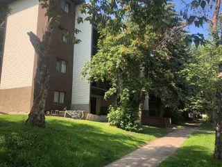 Main Photo: 106 12914 64 Street in Edmonton: Zone 02 Condo for sale : MLS®# E4169167