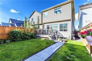 Photo 46: 237 CRANFORD Drive SE in Calgary: Cranston Detached for sale : MLS®# C4287807