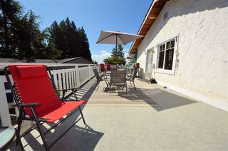 Photo 14: 32185 EAGLE TERRACE in Mission: Mission BC House for sale : MLS®# R2483473