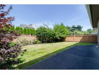Photo 13: 6491 WILLIAMS RD in Richmond: Woodwards House for sale : MLS®# V1104149