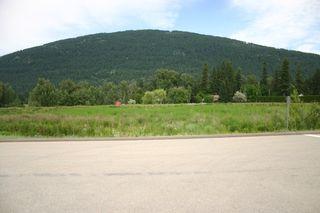 Photo 5: 1190 Northeast 51 Street in Salmon Arm: Vacant Land for sale (NE Salmon Arm)  : MLS®# 10118659