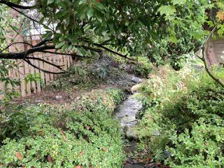 Photo 18: 5488 SPERLING AVENUE in Burnaby: Deer Lake House for sale (Burnaby South)  : MLS®# R2313079