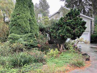 Photo 2: 5488 SPERLING AVENUE in Burnaby: Deer Lake House for sale (Burnaby South)  : MLS®# R2313079