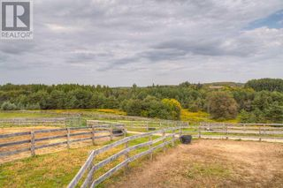 Photo 34: 2495 LLOYDTOWN-AURORA RD in King: Agriculture for sale : MLS®# N4933563