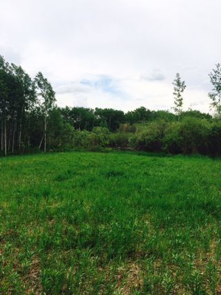 Photo 2: 8 Hillhurst Road: Rural Beaver County Rural Land/Vacant Lot for sale : MLS®# E4216713