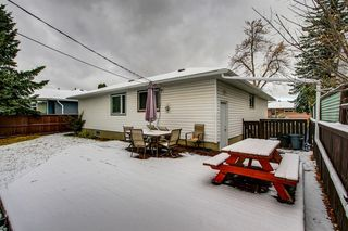 Photo 28: 3735 Brooklyn Crescent NW in Calgary: Brentwood Detached for sale : MLS®# A1042470