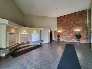 Photo 15: 420 5350 199 Street in Edmonton: Zone 58 Condo for sale : MLS®# E4218672