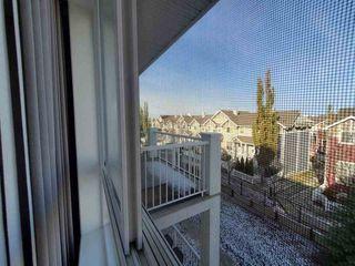 Photo 14: 420 5350 199 Street in Edmonton: Zone 58 Condo for sale : MLS®# E4218672