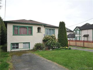 Photo 17: 3167 Carroll St in VICTORIA: Vi Burnside Single Family Detached for sale (Victoria)  : MLS®# 636095