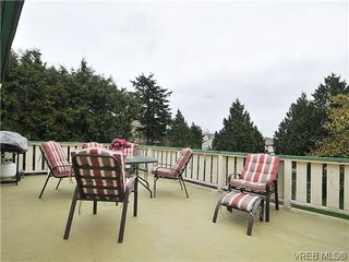 Photo 11: 3167 Carroll St in VICTORIA: Vi Burnside Single Family Detached for sale (Victoria)  : MLS®# 636095