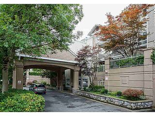 "Photo 18: 327 19750 64 Avenue in Langley: Willoughby Heights Condo for sale in ""The Davenport"" : MLS®# F1418142"