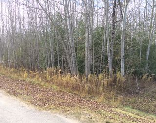 Main Photo: Lot 9 Pinewood Blvd in Kawartha Lakes: Freehold for sale : MLS®# X3266163