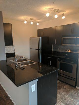 Photo 3: 302, 530 Watt Blvd in Edmonton: Condo for rent